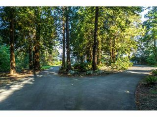 Photo 39: 12929 CRESCENT ROAD in Surrey: Crescent Bch Ocean Pk. House for sale (South Surrey White Rock)  : MLS®# R2456351
