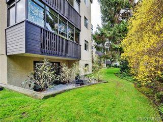 Photo 17: 108 1012 Collinson St in VICTORIA: Vi Fairfield West Condo for sale (Victoria)  : MLS®# 725070