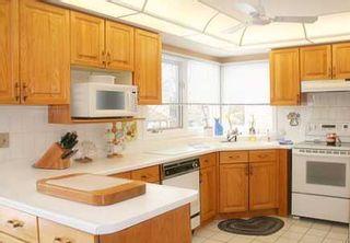 Photo 4: 33 John Button Blvd in MARKHAM: House (2-Storey) for sale (N11: LOCUST HIL)  : MLS®# N1078128