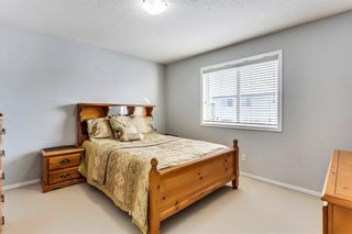 Photo 23: 325 Saddlecrest Way NE in Calgary: Saddle Ridge House  : MLS®# C4149874