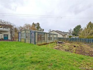 Photo 20: 3478 Lovat Ave in VICTORIA: SE Quadra House for sale (Saanich East)  : MLS®# 752642