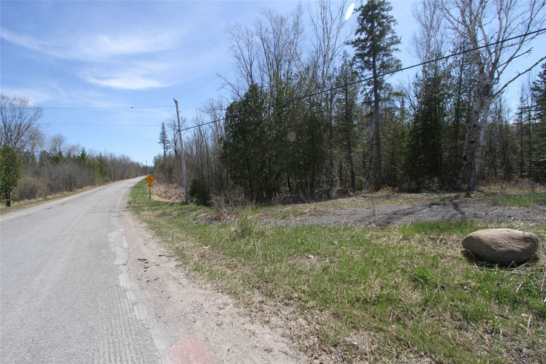 Main Photo: 259 County Rd 41 Road in Kawartha Lakes: Rural Bexley Property for sale : MLS®# X5210398