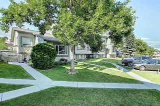 Photo 47: 18 12 TEMPLEWOOD Drive NE in Calgary: Temple Row/Townhouse for sale : MLS®# A1021832