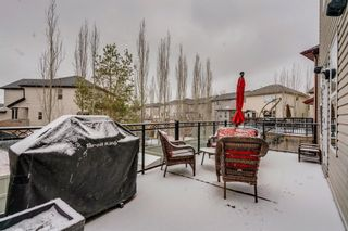 Photo 38: 9 Copperfield Point SE in Calgary: Copperfield Detached for sale : MLS®# A1100718