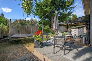 Photo 35: 5520 6 Avenue in Delta: Pebble Hill House for sale (Tsawwassen)  : MLS®# R2606042