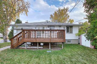 Photo 3: 2104 Victoria Crescent NW in Calgary: Banff Trail Detached for sale : MLS®# A1041397