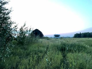 Photo 3: TWP RD 621 RGE RD 243: Rural Athabasca County Rural Land/Vacant Lot for sale : MLS®# E4256601