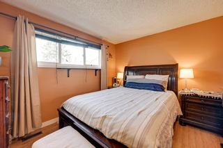 Photo 19: 1692 LAKEWOOD Road S in Edmonton: Zone 29 Townhouse for sale : MLS®# E4248367
