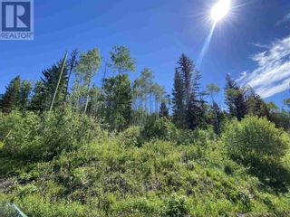 Photo 23: LOT 4 WILCOX ROAD in Forest Grove: Vacant Land for sale : MLS®# R2595645
