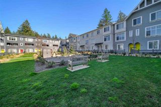 """Photo 20: 65 16678 25 Avenue in Surrey: Grandview Surrey Townhouse for sale in """"FREESTYLE"""" (South Surrey White Rock)  : MLS®# R2559893"""