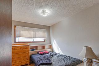 Photo 19: 2403 43 Street SE in Calgary: Forest Lawn Duplex for sale : MLS®# A1082669
