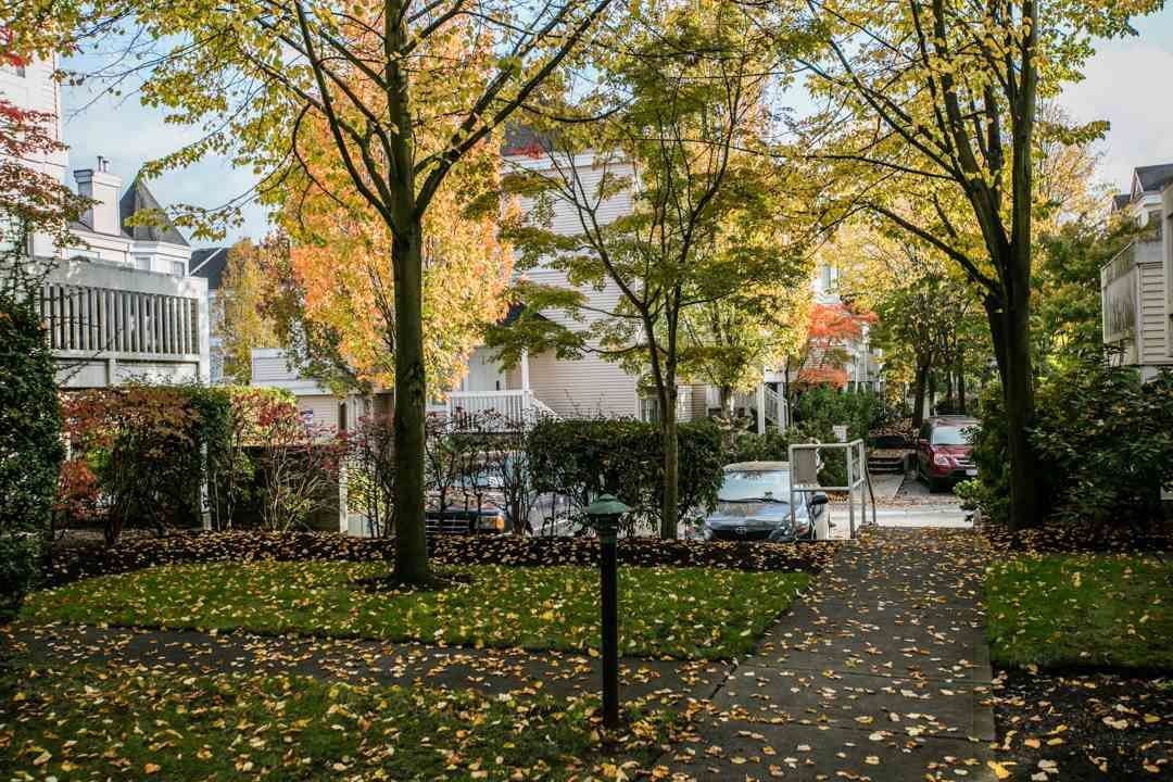 """Photo 20: Photos: 44 12411 JACK BELL Drive in Richmond: East Cambie Townhouse for sale in """"FRANCISCO VILLAGE"""" : MLS®# R2009585"""
