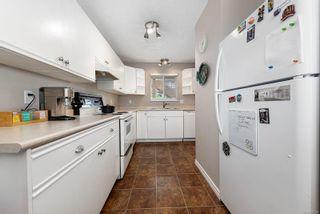 Photo 6: 205 4692 Alderwood Pl in : CV Courtenay East Condo for sale (Comox Valley)  : MLS®# 877138