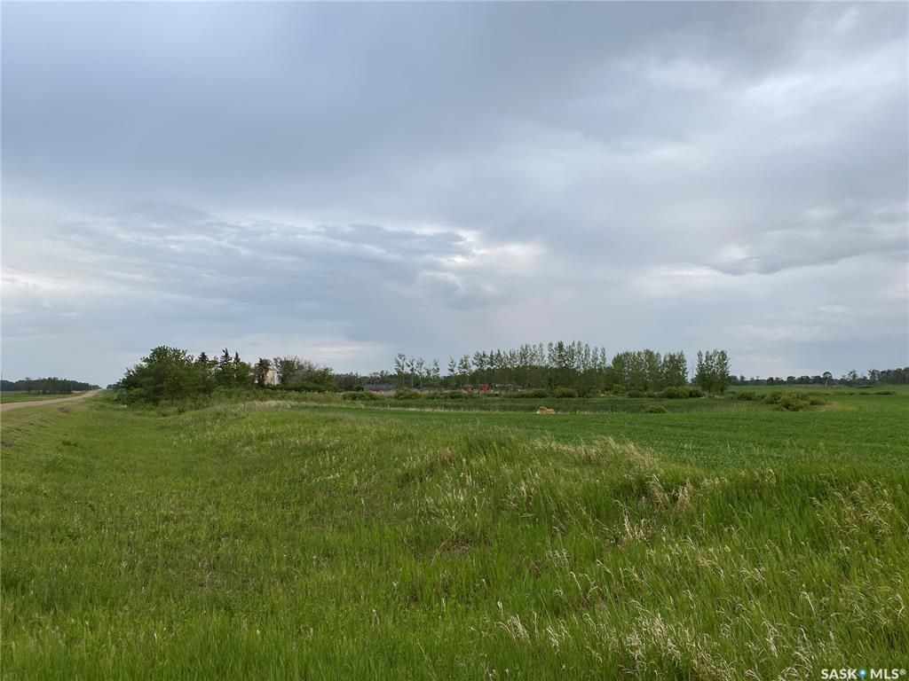 Main Photo: Kostenly Land in Emerald: Farm for sale (Emerald Rm No. 277)  : MLS®# SK861004