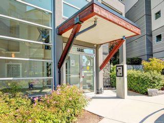 Photo 2: 504 1016 Inverness Rd in : SE Quadra Condo for sale (Saanich East)  : MLS®# 882354