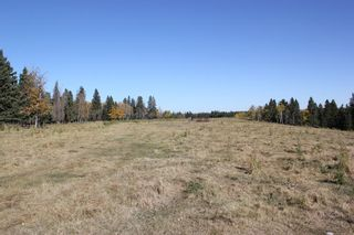 Photo 11: ON Township Road 355A: Rural Red Deer County Land for sale : MLS®# A1039276