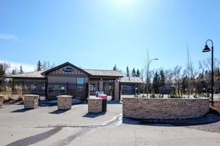 Photo 49: 12420 Lake Christina Road SE in Calgary: Lake Bonavista Detached for sale : MLS®# A1085247