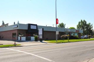 Photo 13: 242 24 Avenue NE in CALGARY: Tuxedo Residential Detached Single Family for sale (Calgary)  : MLS®# C3624676