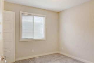 Photo 21: 18 EVANSFIELD Park NW in Calgary: Evanston Detached for sale : MLS®# C4295619