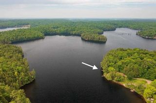 Photo 5: 16 1500 Fish Hatchery Road in Muskoka Lakes: House (Bungalow) for sale : MLS®# X5267124