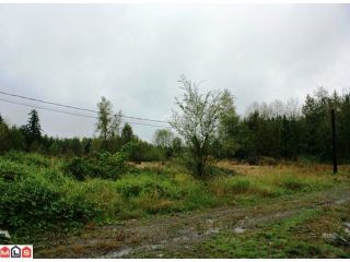Photo 2: 5683 BAYNES Street in Abbotsford: Bradner Land for sale : MLS®# F1023266
