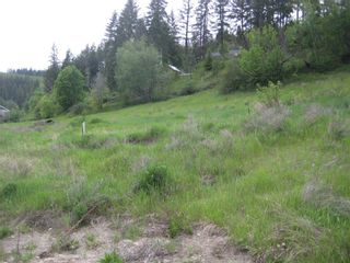 Photo 3: 2481 Squilax Anglemont Road # 2 in Lee Creek: Land Only for sale : MLS®# 10009047