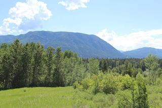 Photo 12: 37 2481 Squilax Anglemont Road in Lee Creek: North Shuswap Land Only for sale (Shuswap)  : MLS®# 10094382