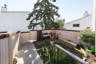 Photo 3: 153 MARLBOROUGH Place in Edmonton: Zone 20 Townhouse for sale : MLS®# E4252834