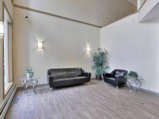 Photo 6: 427 10121 80 Avenue in Edmonton: Zone 17 Condo for sale : MLS®# E4227613