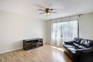 Photo 5: 3423 30A Avenue SE in Calgary: Dover Detached for sale : MLS®# A1114243