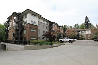 Photo 16: 411 11665 HANEY BYPASS in Maple Ridge: East Central Condo for sale : MLS®# R2263527