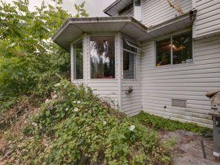 "Photo 25: 21374 RIVER Road in Maple Ridge: Southwest Maple Ridge House for sale in ""River Road"" : MLS®# R2600142"
