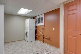Photo 24: 6807 24 Avenue NE in Calgary: Pineridge Detached for sale : MLS®# C4258740