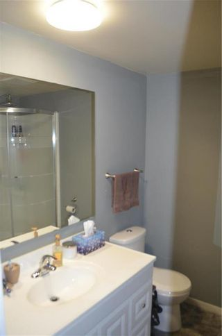 Photo 18: 11 Wiltshire Bay in Winnipeg: Windsor Park Residential for sale (2G)  : MLS®# 202102030