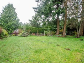 Photo 5: 295 54A Street in Delta: Pebble Hill House for sale (Tsawwassen)  : MLS®# R2514367