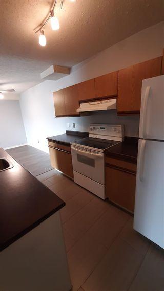 Photo 2: 6212 180 Street in Edmonton: Zone 20 Condo for sale : MLS®# E4255987
