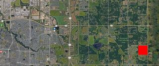Photo 4: H/W 21 TWP RD 521: Rural Strathcona County Rural Land/Vacant Lot for sale : MLS®# E4251916