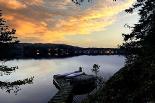 Photo 41: 236 Stevens Rd in : SW Prospect Lake House for sale (Saanich West)  : MLS®# 871772