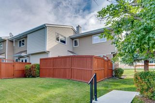 Photo 36: 14 3620 51 Street SW in Calgary: Glenbrook Row/Townhouse for sale : MLS®# C4265108