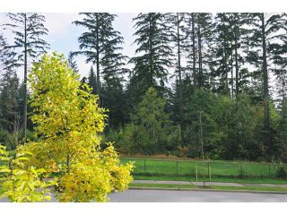 """Photo 9: 3376 PLATEAU BV in Coquitlam: Westwood Plateau House for sale in """"WESTWOOD PLATEAU"""" : MLS®# V917330"""