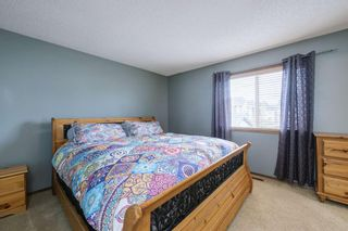Photo 21: 234 ELGIN View SE in Calgary: McKenzie Towne Detached for sale : MLS®# A1035029