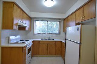 Photo 11: 16608 93 Avenue in Edmonton: Zone 22 House for sale : MLS®# E4259363