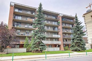 Photo 2: 204 1320 12 Avenue SW in Calgary: Beltline Apartment for sale : MLS®# A1128218