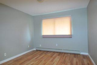 Photo 7: 11744 203 Street in Maple Ridge: Southwest Maple Ridge House for sale : MLS®# R2469640