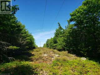 Photo 21: 8801 SEVERN RIVER in Orillia: Vacant Land for sale : MLS®# 40120545