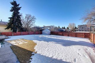 Photo 32: 3711 39 Street NE in Calgary: Whitehorn Detached for sale : MLS®# A1063183