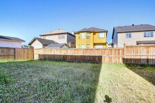 Photo 46: 8 Saddlecrest Gardens NE in Calgary: Saddle Ridge Detached for sale : MLS®# A1125888