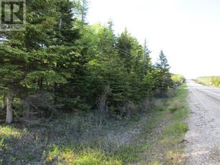 Photo 5: 25B TRANS CANADA Highway in PYNNS BROOK: Vacant Land for sale : MLS®# 1229378