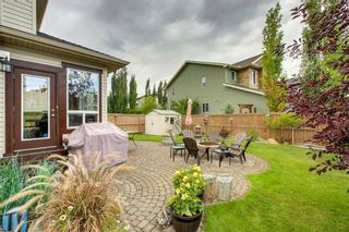 Photo 46: 125 CHAPARRAL RAVINE View SE in Calgary: Chaparral Detached for sale : MLS®# C4264751