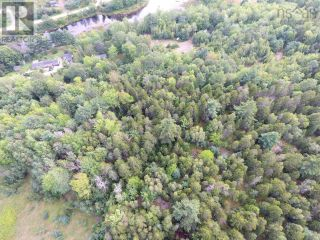 Photo 10: Lot 1 Headline Road in Lower Cornwall: Vacant Land for sale : MLS®# 202123037